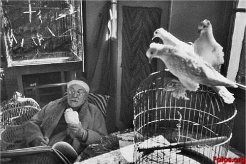 Matisse.-C.-por Henri Cartie-Bresson.-1944.-fotos org