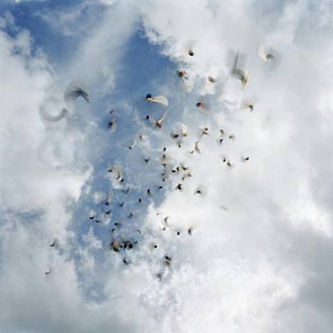 nubes.-abc.-por Neeta Madahar.-2005.-Howard Yezerski Gallery.-artnet