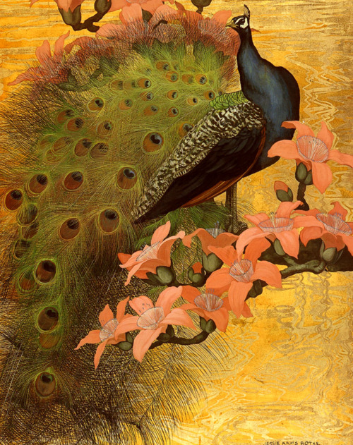 animales.-uuy.-pavo real.-Jessie Arms Botke.-1889-1971