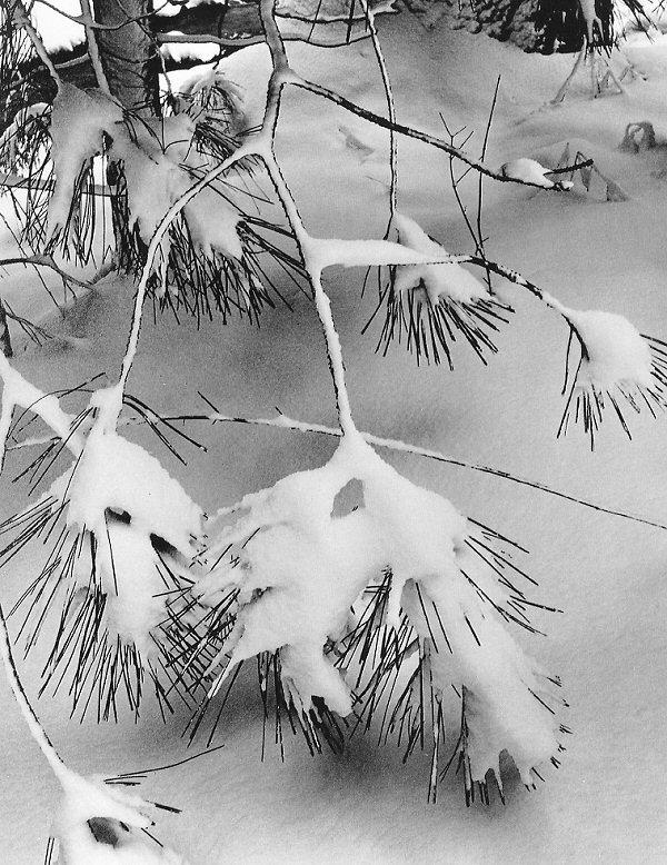 estaciones.-446vvb.-invierno.-nieve.-Ansel Adams