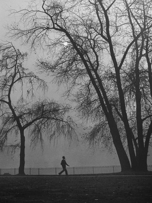 jardines.-4ded.-Hans Wild- ciudades.-Londres 1946