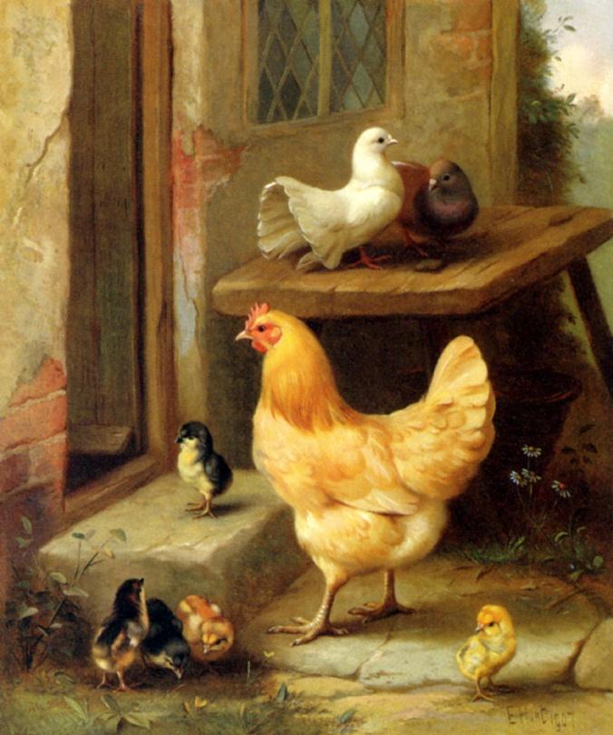 animales.-kk55.-gallina.-pollos.- Edgar Hunt.-1907