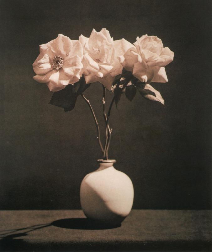 flores-rec-rosas-robert-mapplethorpe-mil-novecientos-ochenta-y-tres