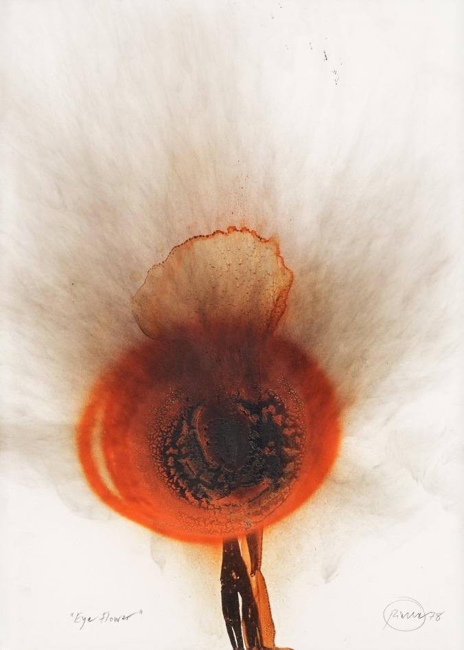 flores-uin-otto-piene-mil-novecientos-setenta-y-ocho