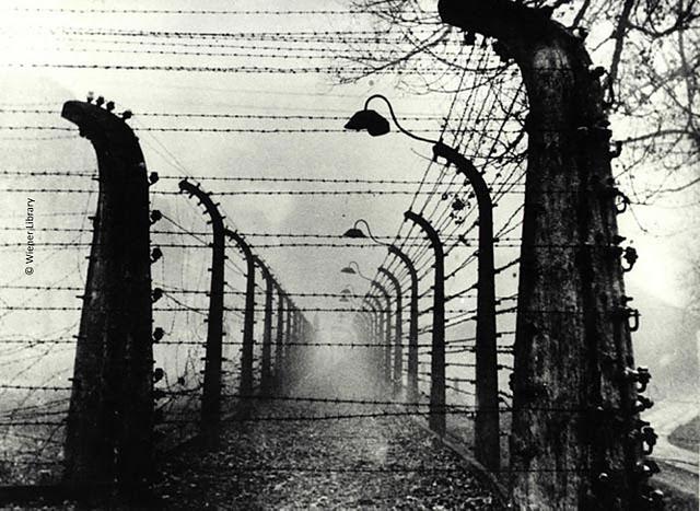 guerra-5fbbn-foto-wiener-biblioteca