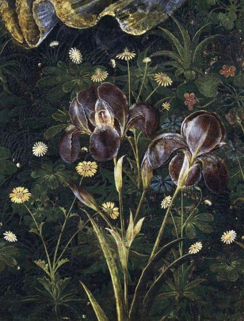 primavera-vfr-boticelli